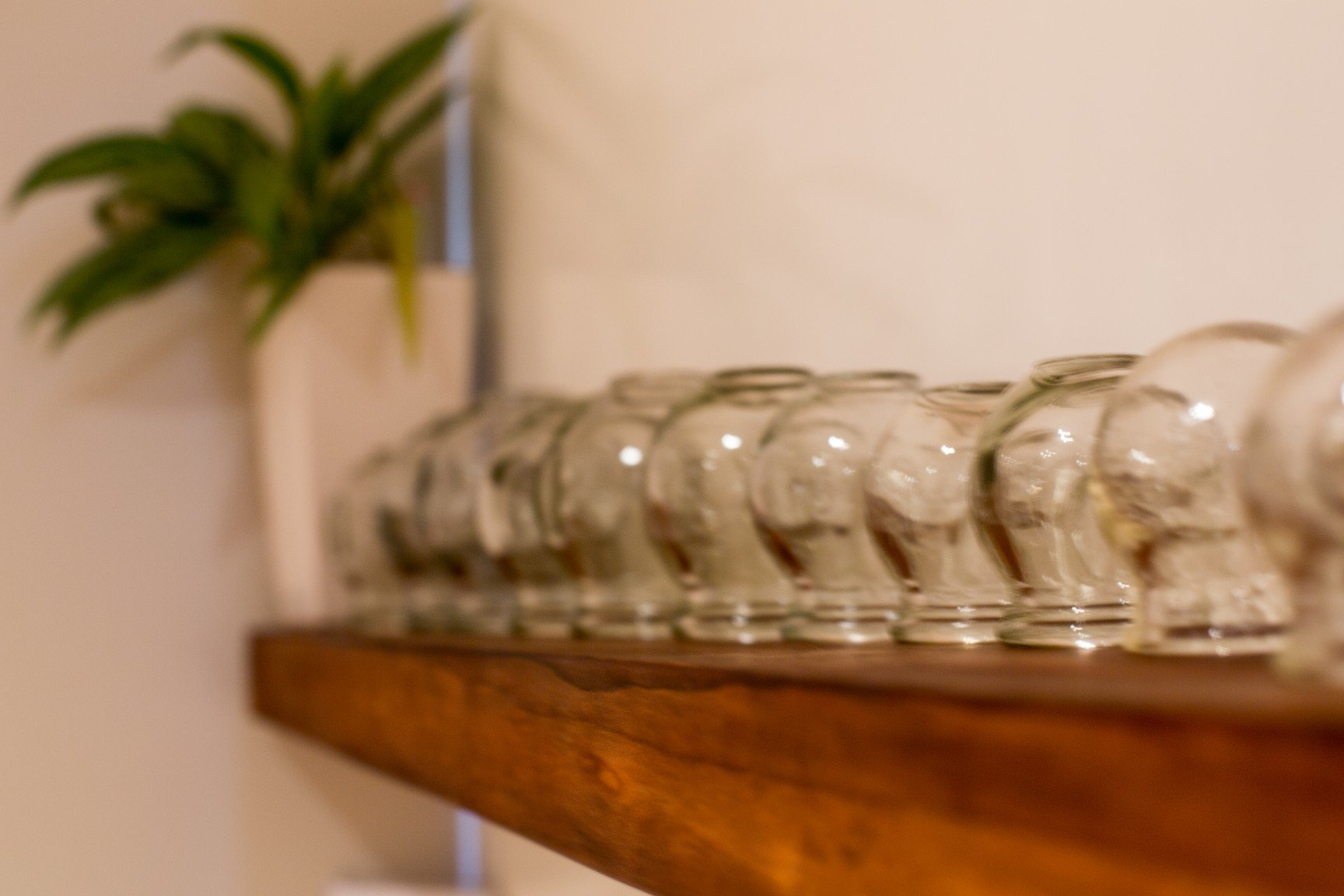 photo of cups at oasis massage spa cape town